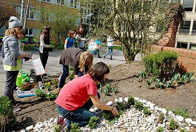 Die Schulgarten-AG brachte die Anpflanzung auf dem Pausenhof auf Vordermann.
